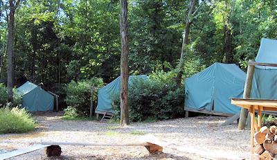 Platform Tents at Hemlock & Bull Run Run 50 Miler